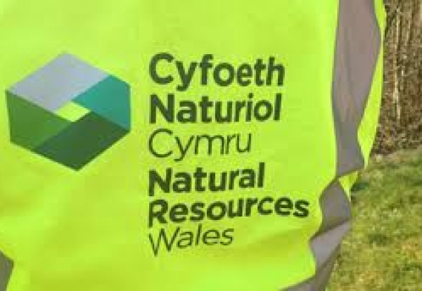 Natural Resources Body Wales