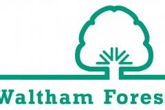 waltham_testimonial_logo