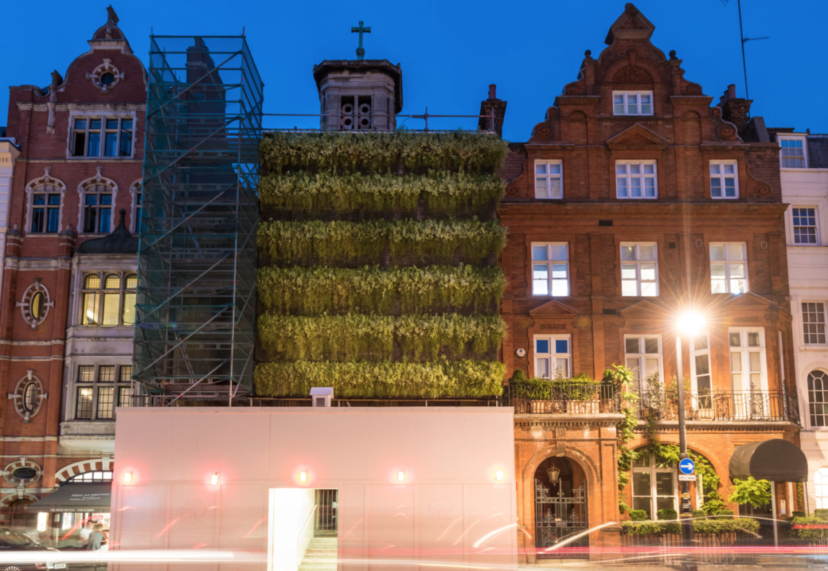 Scaffolding fitted with a living wall can reduce air pollution by up to 20% and dampen noise by 10 decibels