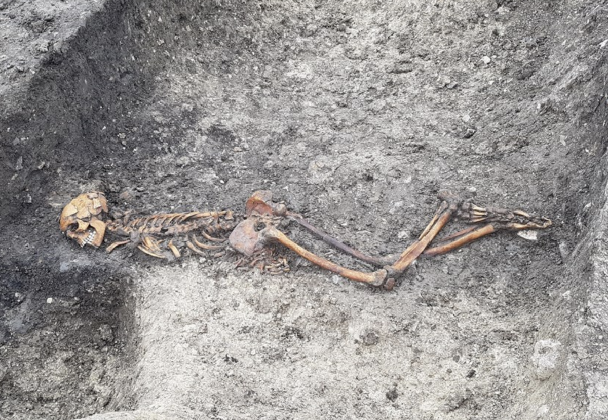 Skeleton of Iron Age man buried face down in a ditch with bound hands